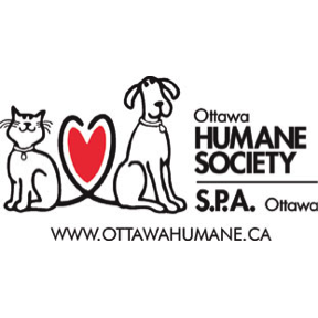 Chair of Strategic Planning Committee, Ottawa Humane Society Board of Directors
